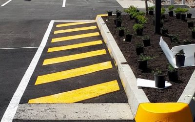Our Recent Line Marking Projects